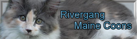 http://www.rivergang.at